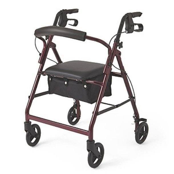 Rollator in the Style of a Guardian